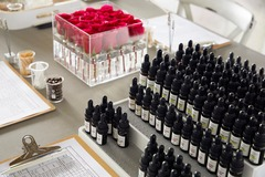 Services: Perfume Workshops - 2 hour - 30ml bottle - choice of 60 oils $99