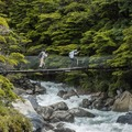 Réserver (avec paiement en ligne): W Trek Independent - Chile