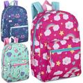 Liquidation Lot: 24 x 17 Inch Printed Backpacks - Girls Assortment