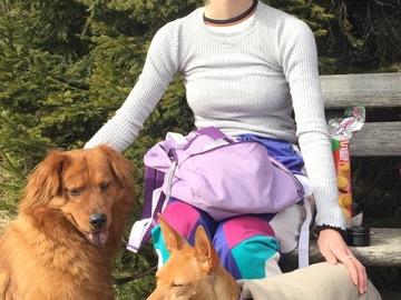 Urlaubsbetreuung: Hundebetreuung mit viel Auslauf und Liebe
