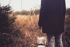 Urlaubsbetreuung: Urlaubsbetreuung für Hunde in Wien