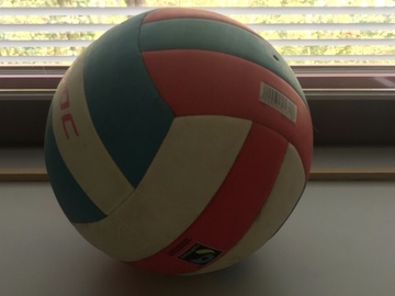 Selling: Move sale - volleyball