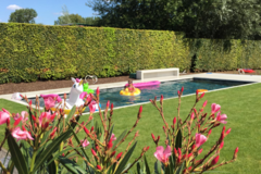 Click foto voor info: Zwembad met keuken-poolhouse