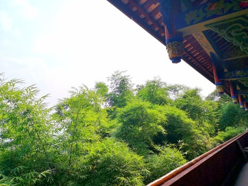 Offering with online payment: Sichuan 6-day-5-night Culture & Nature Travel