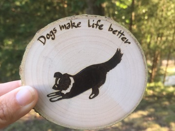 Selling: Playful Border Collie Magnet