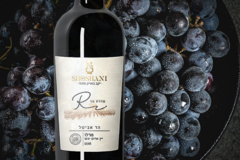 Buy Products: Merlot 2018 (Sulfite Free)