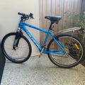Daily Rate: Avanti Axis Mountain Bike