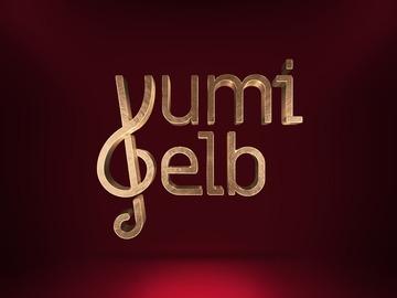 Accept Deposits Online: Yumi Gelb