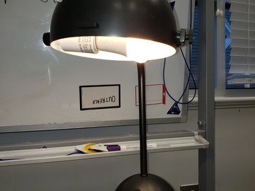 Produkte Verkaufen: Desk Lamp