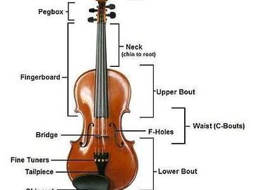 Offering: Violin lessons