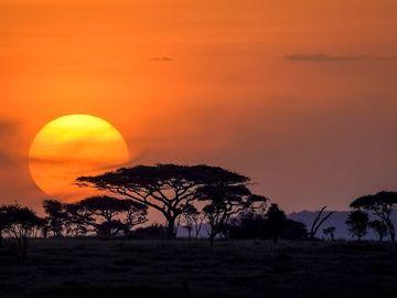Offering with online payment: 6Days budget  camping safari Serengeti,Ngorongoro,Tarangire a