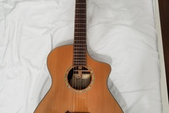 Renting out: Breedlove Cascade c25/cre acoustic electric
