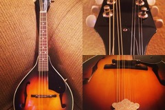 Renting out: Kentucky KM-150 Mandolin