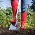 NOS JARDINS A PARTAGER: projet de rénovation de jardin