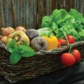PETITES ANNONCES: Loue jardin potager