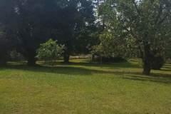 NOS JARDINS A LOUER: Grand jardin entre Toulouse et Montauban