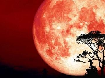 Selling: **Harvest full moon spells **