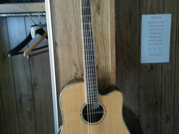 Selling: Washburn A/E