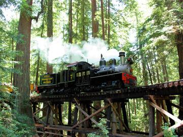 Custom Package: Train rides thru the Redwoods
