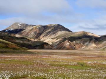Réserver (avec paiement en ligne): Trek de Laugavegur - Islande