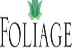 Workspace Profile: Foliage Indoor Plant Hire
