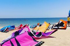 Renting out: kitesurfing Equipement Rental