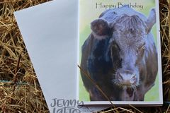 Products: Cow Happy Birthday Card
