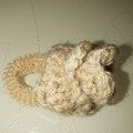 Vente au détail: chouchou fleur beige