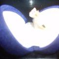 Ilmoitus: Timanttisormus, 0,98 ct. paino 3,55 g