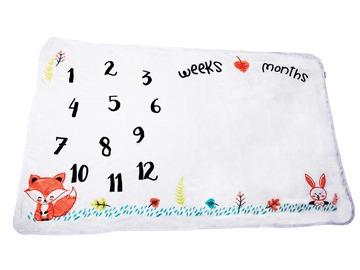 Buy Now: Baby Milestone Blanket Gift Set