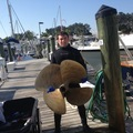 Offering: Hull Cleaning and Dive Services - Sarasota, FL