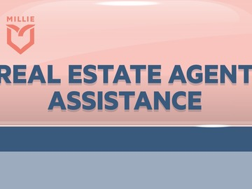 Service: Agent Assistant- negotiable