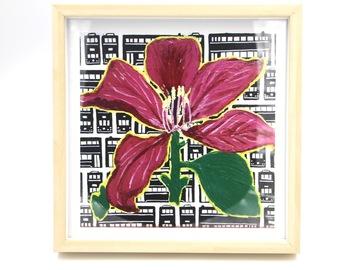 : Bauhinia Flower - Art Print