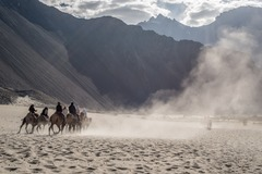 Demande de devis: Short Ladakh Trip - India