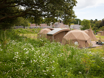 Accommodation Per Night: Glamping - Durrell Wildlife Camp