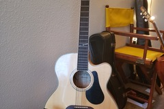 Renting out: Alvarez 12 String