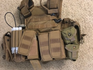 Selling: Paraclete plate carrier w/ SORD pouches