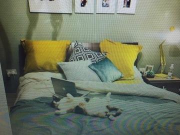 Rooms for rent: Double bedroom for rent in Swieqi