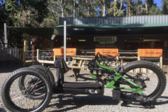 Weekly Rate: WOLTURNUS FATBIKE for Wheelchair Users