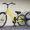 Monthly Rate: Jamis Trike