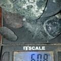 Buy Now: 60.8 Gram Diamond Bearing Kimberlite Lot