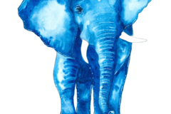 : The Blue Elephant (Print)
