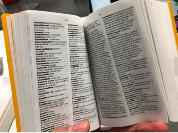 Selling: Finnish-English/English-Finnish pocket dictionary