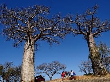 Réserver (avec paiement en ligne): Trekking découverte du Makay - Madagascar