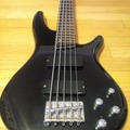 Renting out: 5 string Sound Gear by Ibanez (SR 305 DX) bass