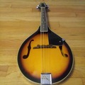 Renting out: Rogue mandolin