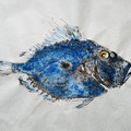 Vente au détail: Gyotaku