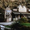 Retreat Package: Kennolyn's Redwood Corporate Retreat in the Santa Cruz Mountains