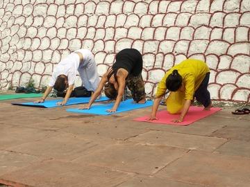 1.5 Credits: Vinyasa Yoga