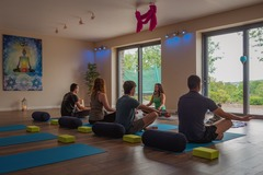 1.5 Credits: Iyengar Yoga
